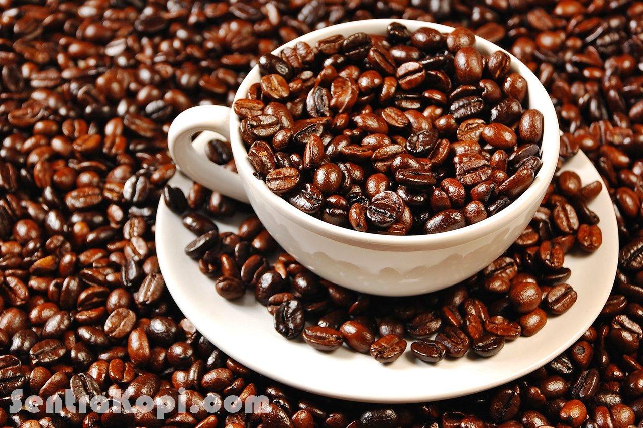 kualitas biji kopi